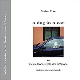 Stefan Eber a dog in a car